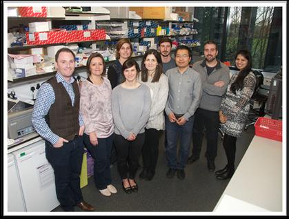 team-Genome Editing 2018